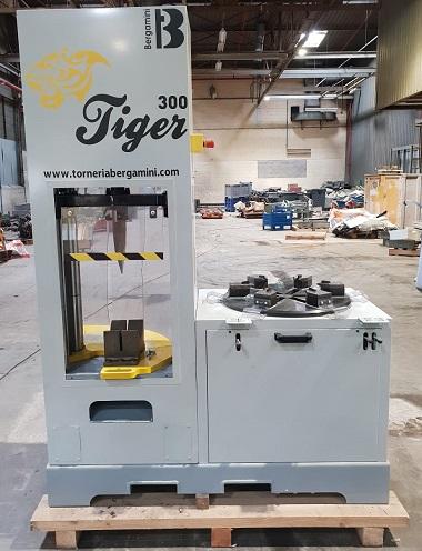 Tiger 300 bergamini occasion